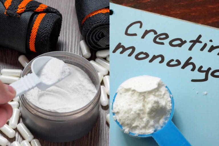 BCAA vs Creatine – What Are The Differences?