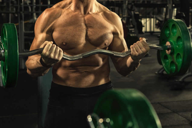 EZ Curl Bar and Bench Press Bar Weight in KG