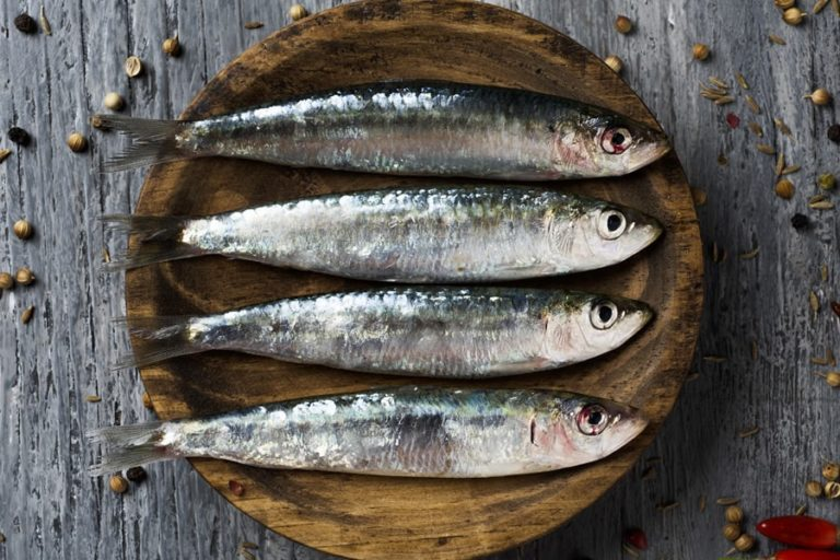 Sardines Nutrition Facts – How Much Iron, Calcium, Protein, DHA and Calories Do They Have?